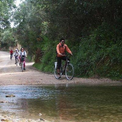 Passeios organizados  de bicicletas ecovia do algarve