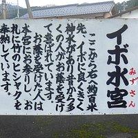 道路横の標識