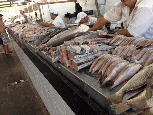 Vista de um dos balcões do Mercado de Peixes.