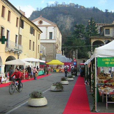Piazza mazzini MONSELICE