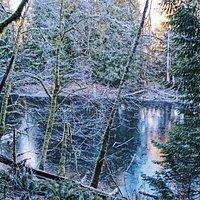 Geneva Pond at the Stimpson Family Nature Reserve