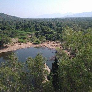 Below the Dam View
