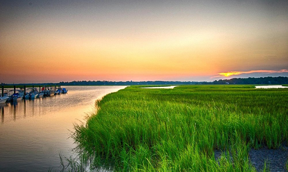 The South Carolina lowcountry at it's finest.