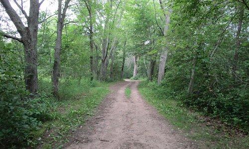 Eagle Point trail loop