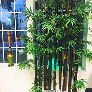 Bamboo symbolize our spirit in making you relax.