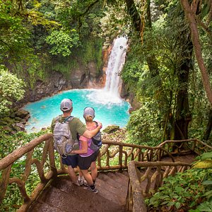 Rainforest Hiking