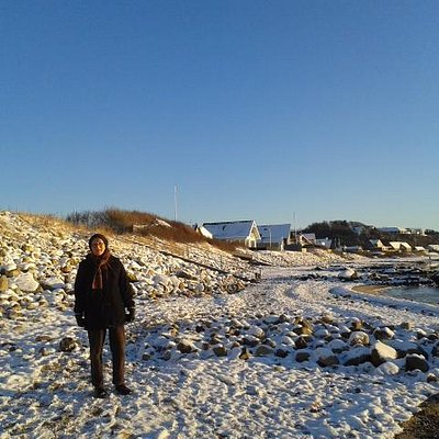En levende Glyngøre sild ved Limfjorden