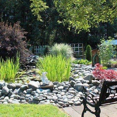 Sweet and serene pond