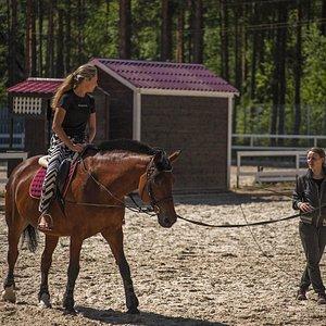 """Занятия конным спортом в конным клубе """"Комарово"""""""