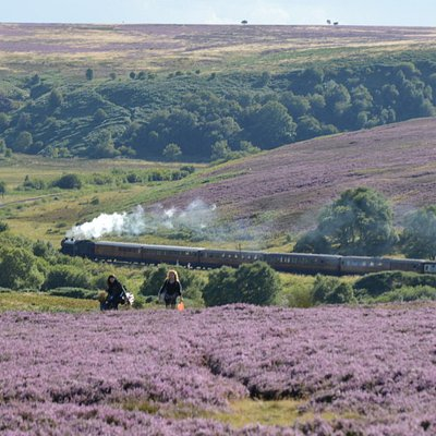 North York Moors by steam