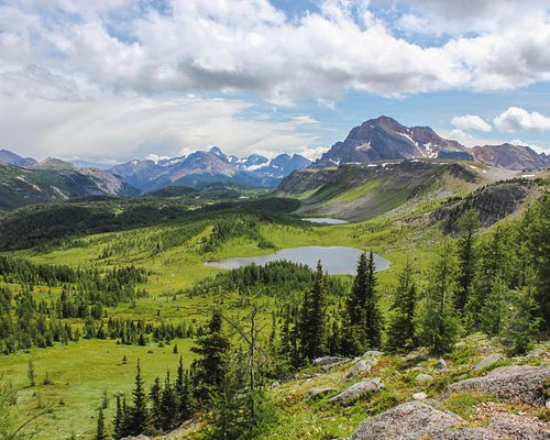 Healy Pass trail