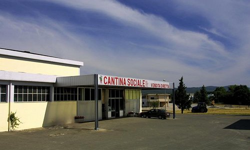 Ingresso Cantina Sociale Colline del Chianti e Chianti Classico e negozio con vendita diretta.