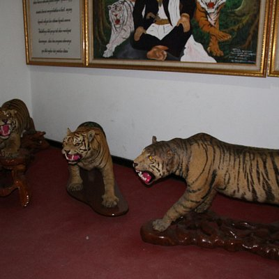 Tigers symbol of local military