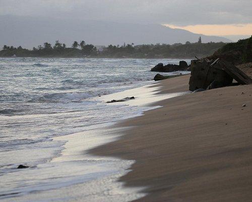 Waiehu Beach