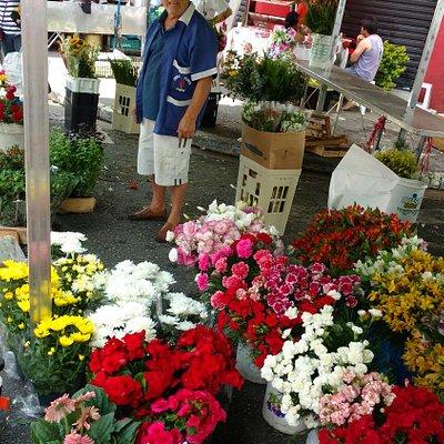 Banca de flores do Jaime
