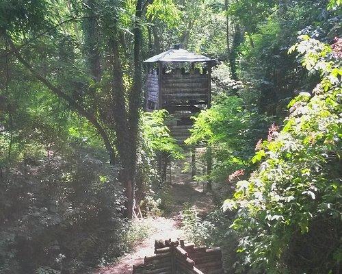 le strutture nel bosco .... scorcio dalla piattaforma di attacco al fortino!