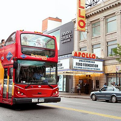 City Sightseeing New York Bus
