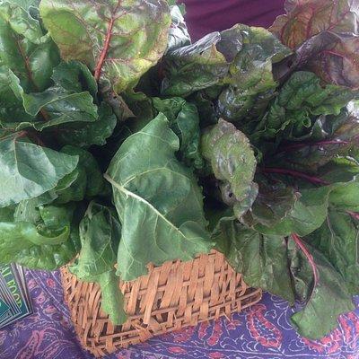 Lots of fresh local veggies!