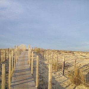 Aménagement pour la montée au belvédère en haut des dunes