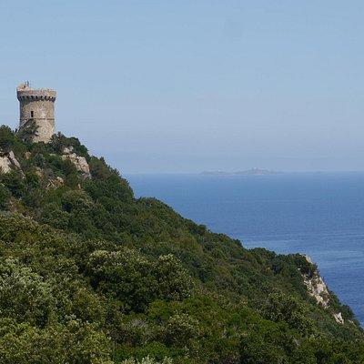 La Tour de Capo Di Muro