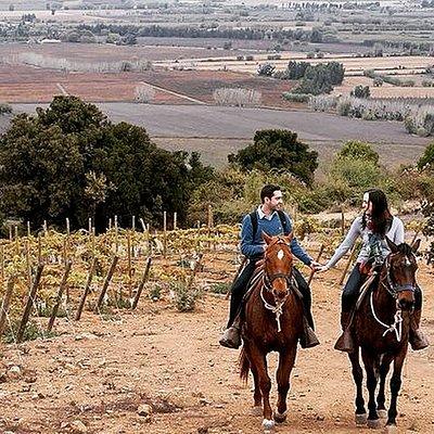 horseback riding Colchagua