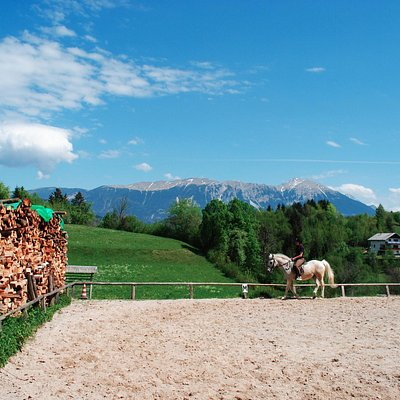 Outdoor riding arena in the late spring
