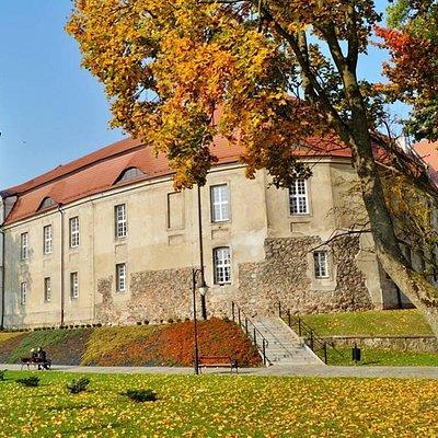 Zamek od strony ulicy Niedziałkowskiego