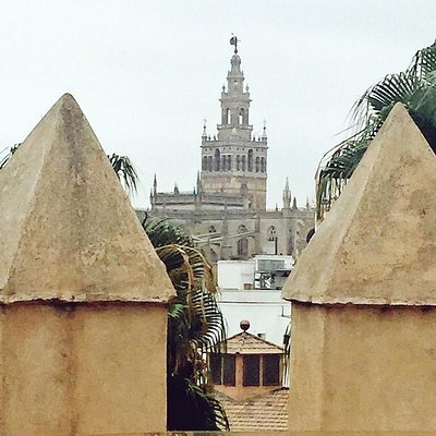 Catedral de Sevilla desde la Torre del Oro