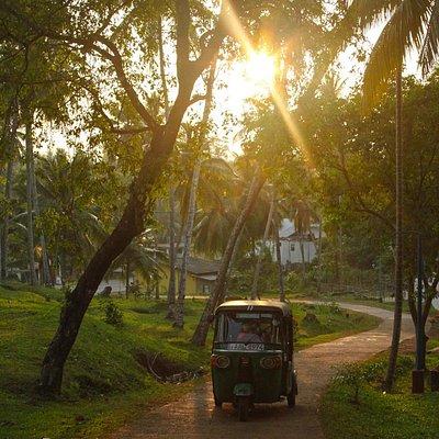 tuktuk route to Vihara