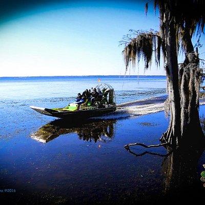 Saint Johns River Safari on the Sea Serpent