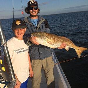 Bull Red Fish near Watercolor Florida
