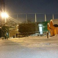 Зимние фотозарисовки Аквакомплекса