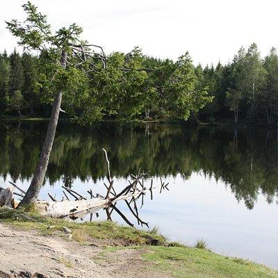 Relax sulle rive dell'Øvresetertjern
