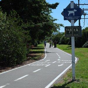 自転車&歩行者2車線専用で、左側通行です。