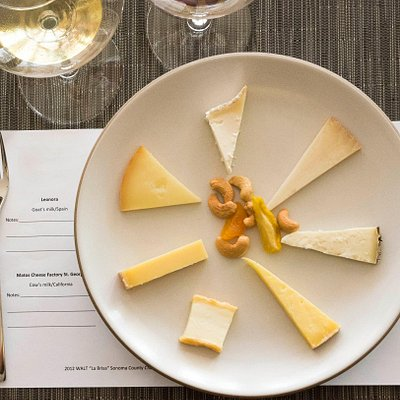 Each evening we will taste 6 to 8 cheeses