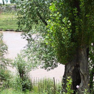 Orillas del Rio Tunuyan