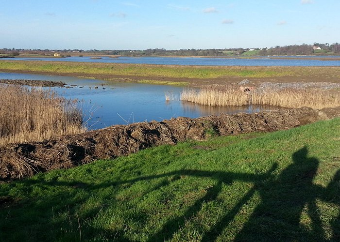 Minsmere from the South West