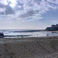 ...Bleak House is near by the bleak beach....
