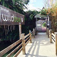 Welcome to WildCare!