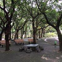 Chiang Kai-shek Memorial Hall Park 6