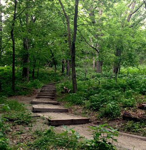 along the trail: how inviting!