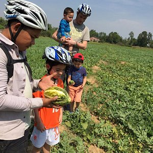 Pisal showing our boys the watermelon field we came across along the road.