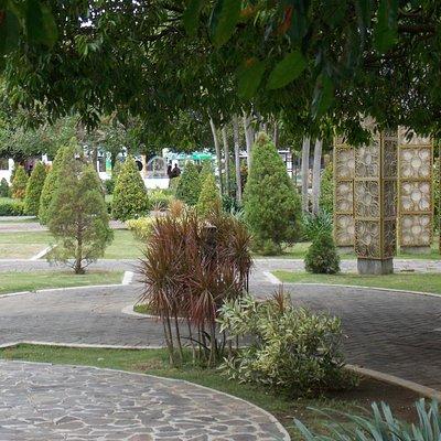taman yang teduh