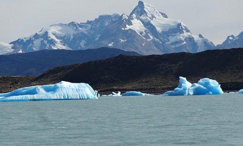 en medio de los icebergs