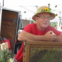 Tom with honey bees