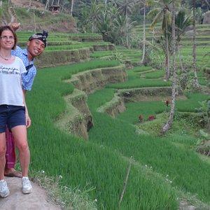 Les rizières en terrasse Tegalalang avec une balade