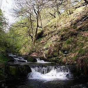Waterfall @ delightful tumbling upland stream Gorpley Clough