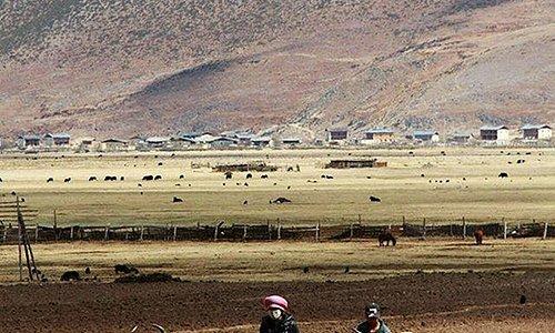 Yila Grassland