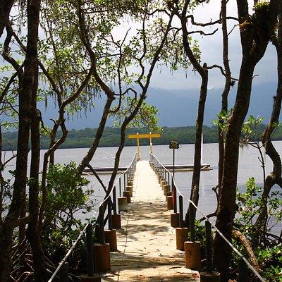 Ponte sobre o Mangue