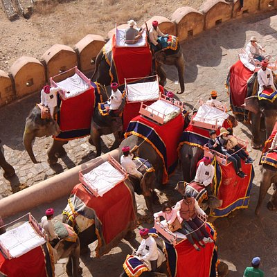 Elephant ride up to the Amber fort at Jaipur - great fun!